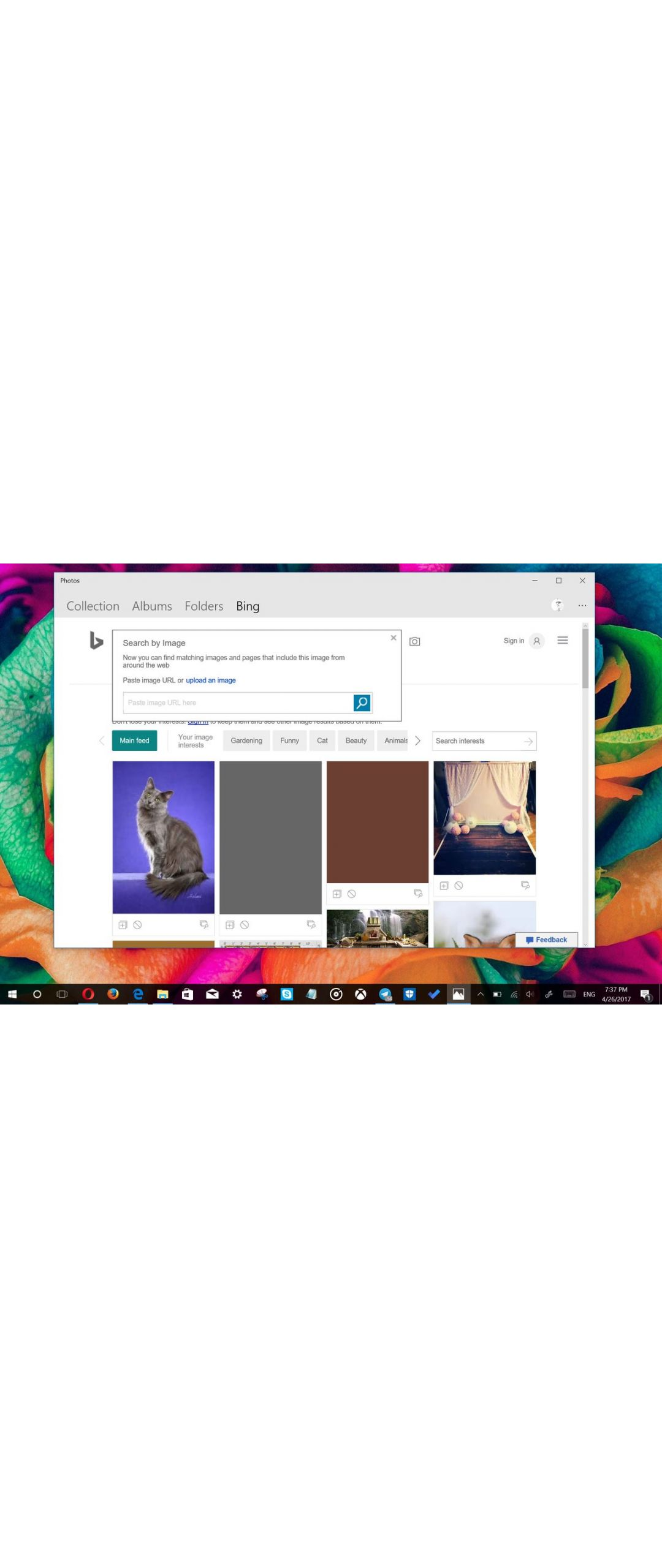 App de Fotos para Windows 10 integrará a Bing