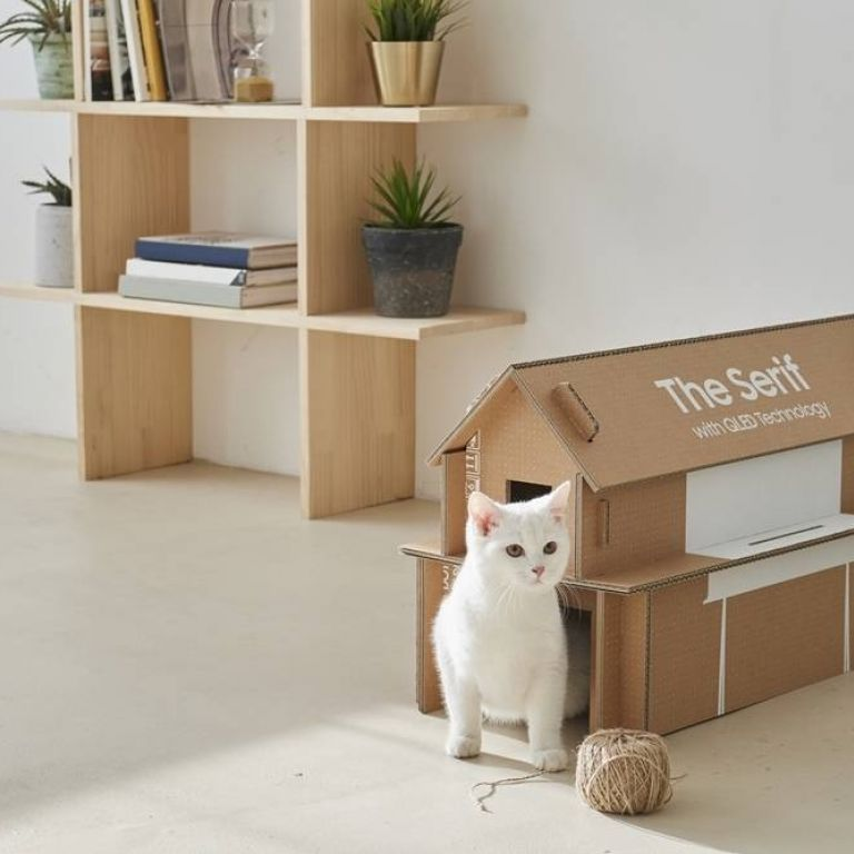 Samsung presenta un nuevo empaque ecológico para sus productos, que de seguro tu gato amará