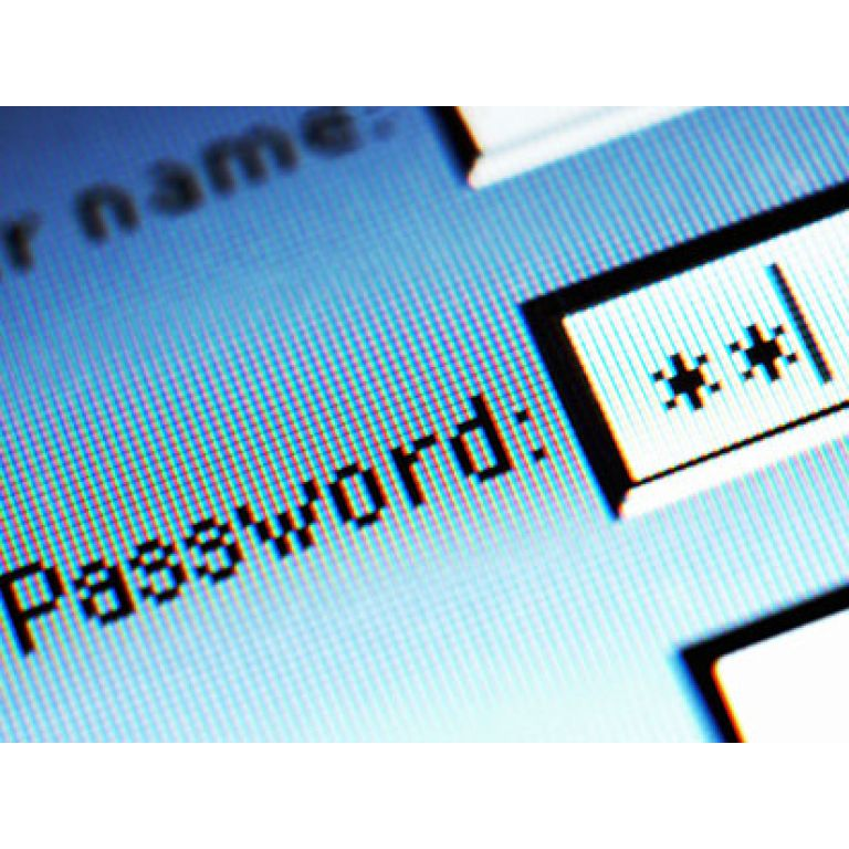 Los usuarios de internet necesitan 22 passwords