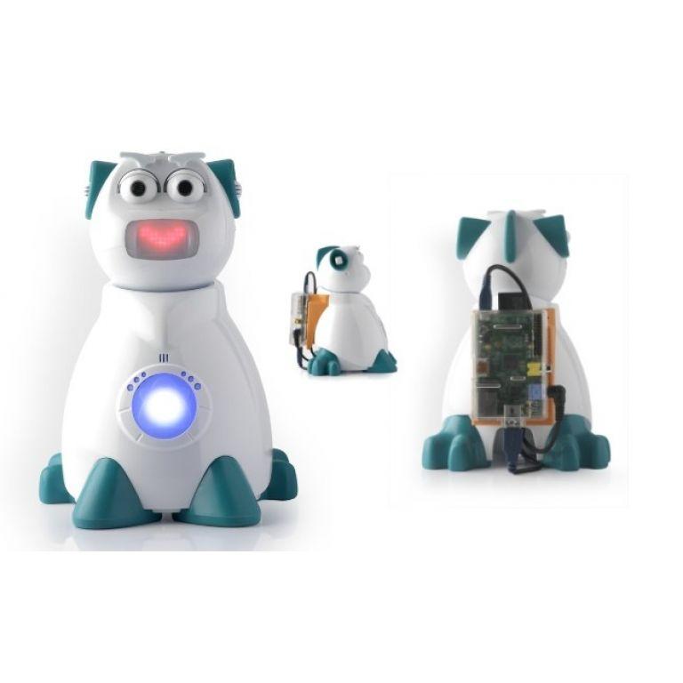 Aisoy 1, el robot español